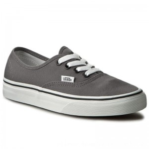 Vans Turnschuhe Authentic VN0JRAPBQ Pewter/Black [Outlet]
