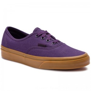 Vans Turnschuhe Authentic VN0A38EMVKT1 Mysterioso/Gum [Outlet]