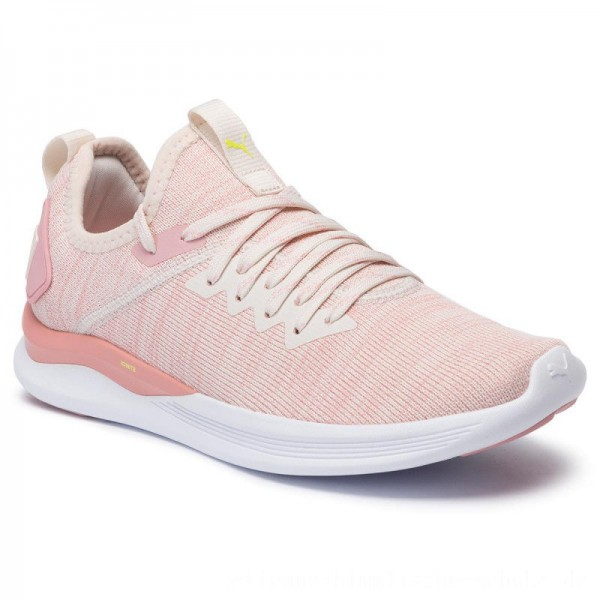 Puma Schuhe Ignite Flash EvoKnit Wn's 190511 18 Pastel Parchment/Bridal Rose [Outlet]